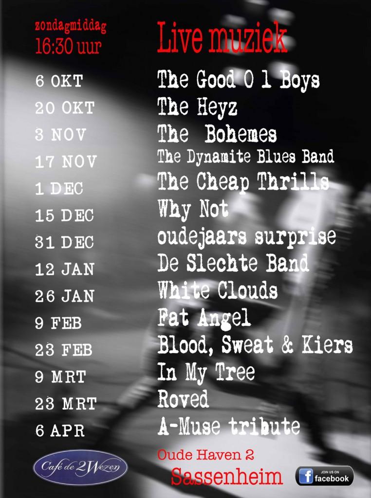 poster bands wezen 2013-2014klein